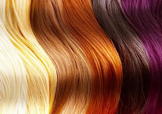 Hair Colour Frenzy!
