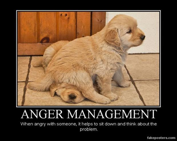 Why anger in arguments is pointless