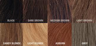 A Guide To Diffe Hair Types And Color