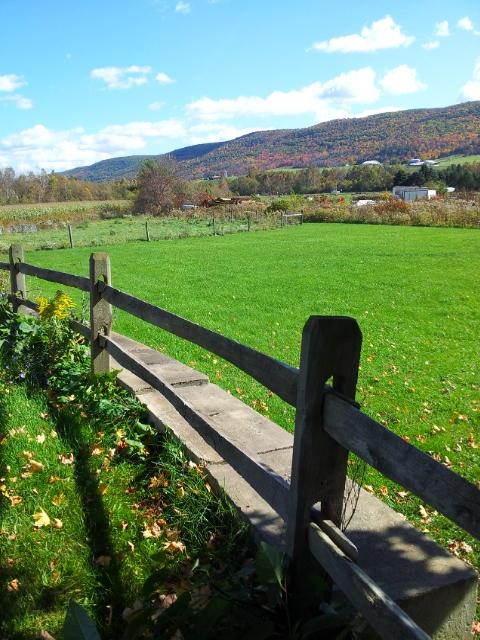 What's On The Other Side Of The Fence? (An Essay)