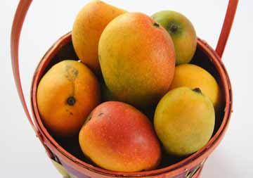35 things you may not have known about FRUIT!!