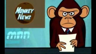 Monkey News: A Monkey Conspiracy