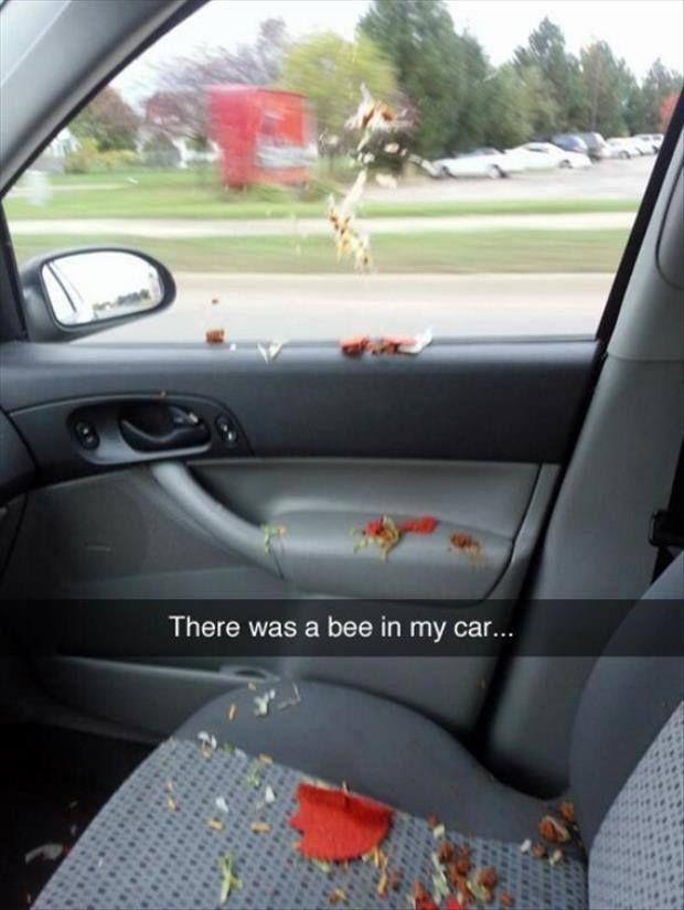 20 hilarious Snapchats