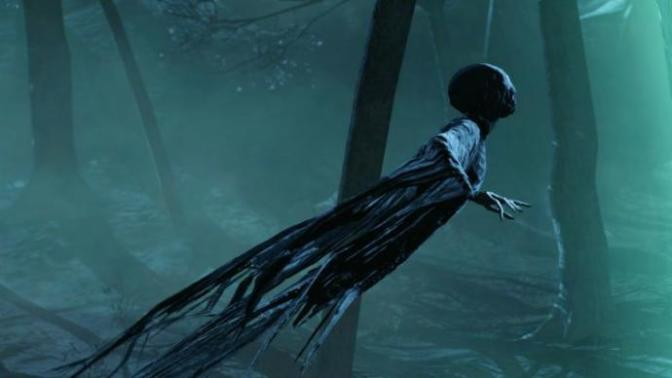 Dementors are real creatures, here is the proof.