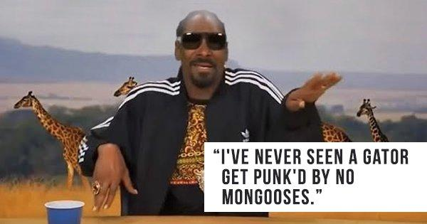 Planet Snoop: Snoop Dogg Narrates A Weed-Inspired Nature Show