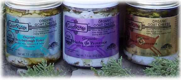 All things GOAT CHEESE!