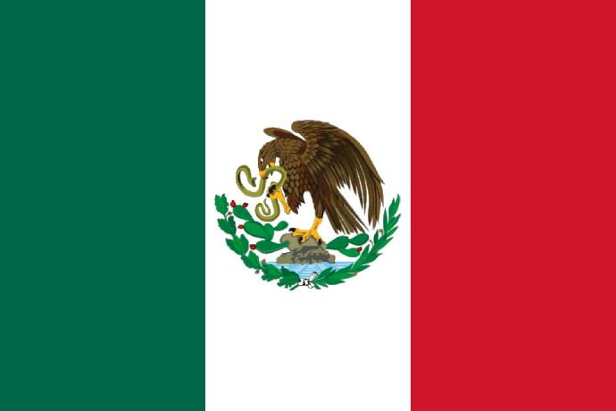 La Raza: My interpretation of race in Mexico