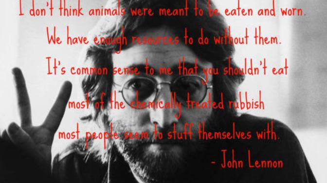 I Am a Proud Animal Rights Activist