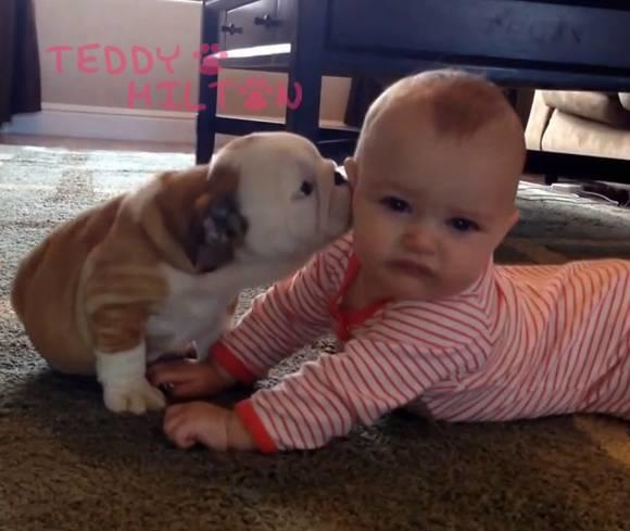 Babies & Puppies: Cute Pictures to Keep You Smiling All Weekend!