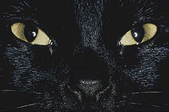 8 Superstitions I Am VERY Familiar With