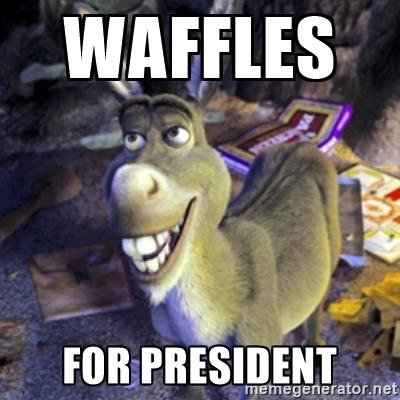 If I Was Elected President...