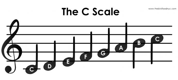 Music For Dummies: The Basics Explained