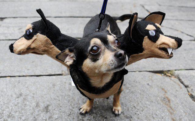 5 Halloween Costume Problem Solvers