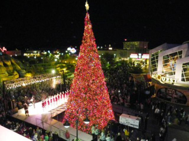 Fun Places to Visit Down South During Christmas Time
