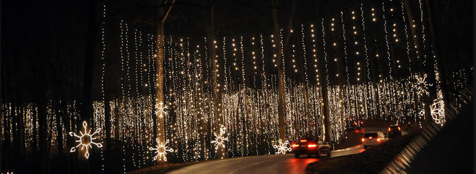 More Fun Places to Visit Down South During Christmas Time