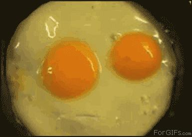 Chef Blondfrog's Top 10 Egg Recipes Everyone Should Try