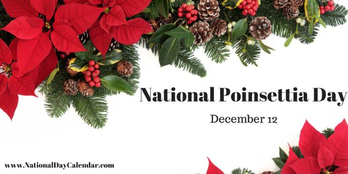11 Weird Holidays in December