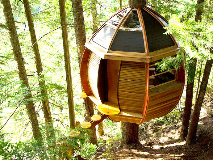 Forest Recluse Housing Ideas