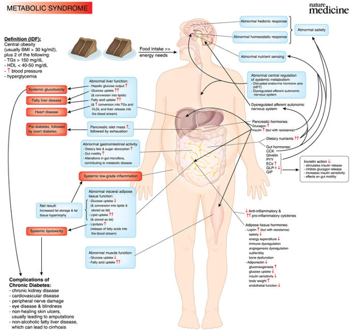 Why We Must View Metabolic Diseases As A Collective Problem, Not A Personal Problem