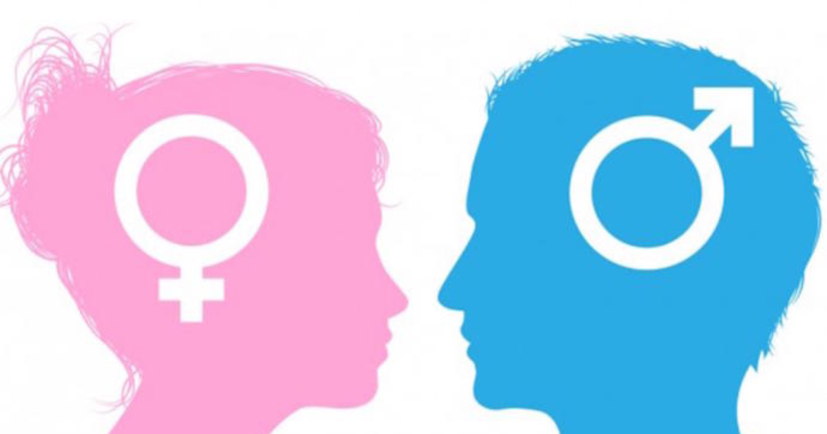 a discussion on the negative attitude of society towards different types of gender identities One outgroup transfer to attitudes toward another similarly stigmatized group (pettigrew 2009tauschetal2010) tee and hegarty's(2006) data suggest that a secondary transfer effect may operate with attitudes toward sexual and gender minorities, at least among students in the united kingdom althoughthesestudiesprovideimportantdata,theyarefew in number.