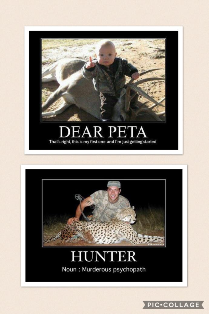 My Opinion on Animal Rights Activists and Hunters