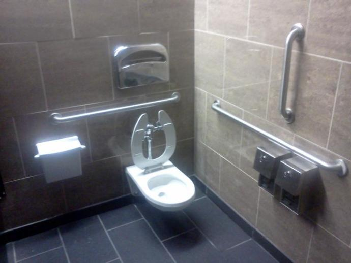 Can You Use The Handicap Bathroom Stall?