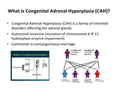 cah enzyme diagram online wiring diagram rh 11 ddht autofit wrohm de
