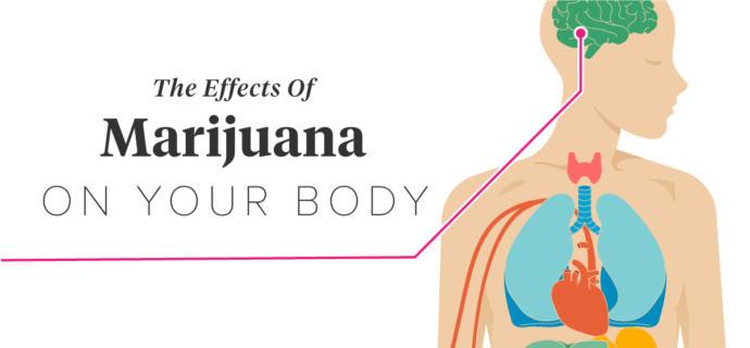 Marijuana Shouldn't be Legalized