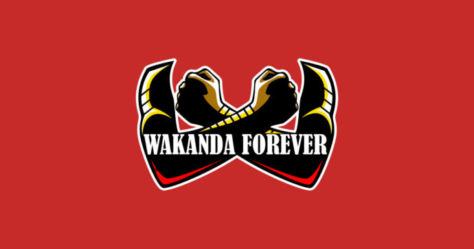 Wakanda Forever! My Black Panther Review