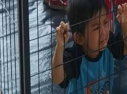 Immigration, Children In Cages in America and the Bible