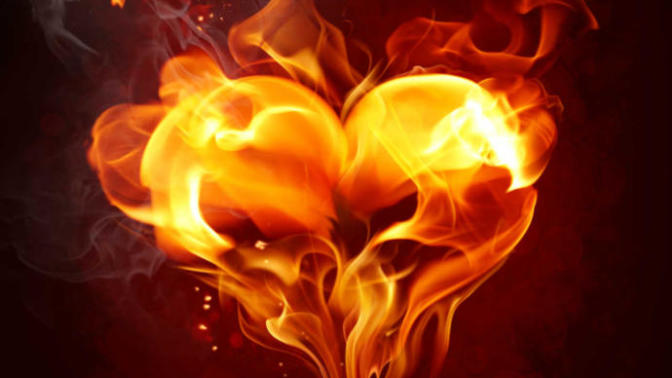 What Is The Difference Between Love And Passion?