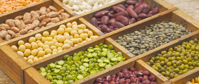 5 Do's and a Don't for Protein-Packed, Plant-Based Diet Plans!