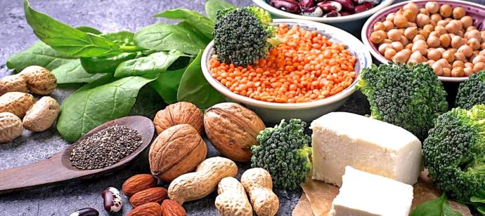 A plant-based ovo-lacto-vegetarian diet includes dairy products and eggs along with plant foods.
