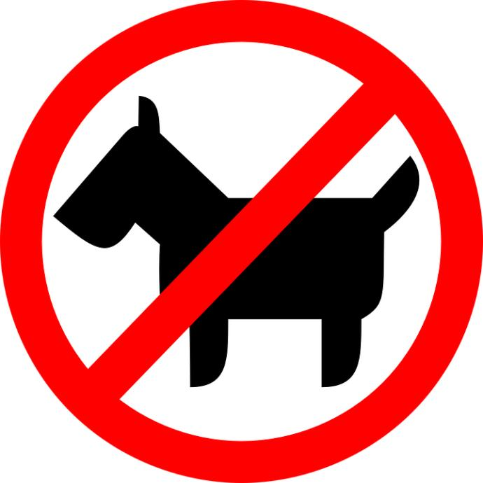 5 Reasons Why I HATE Dogs and Why They Are Terrible Creatures