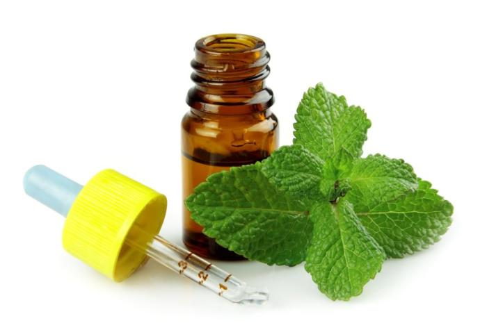 Peppermint or Eucalyptus for achy muscles and congestion.