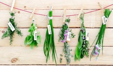 Using your gardening for cleaning