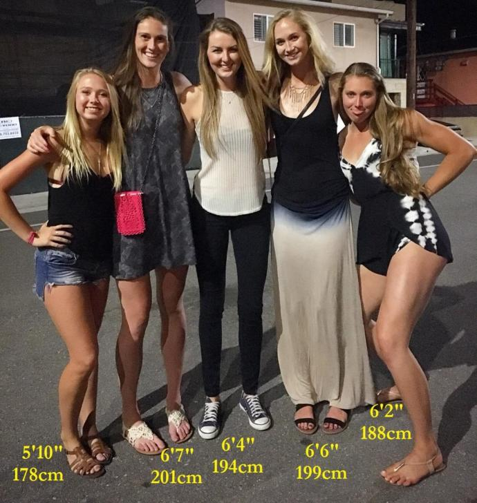 Group Of Sexy Tall Girls