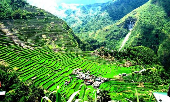 Banaue Rice Terraces, Ifugao Mountains (8th wonder of the world)