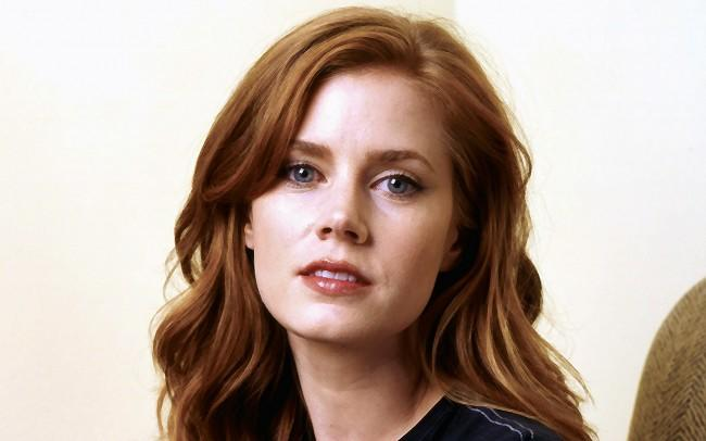 Amy Adams is fairly good looking, although she's aged a bit she's still quite pretty