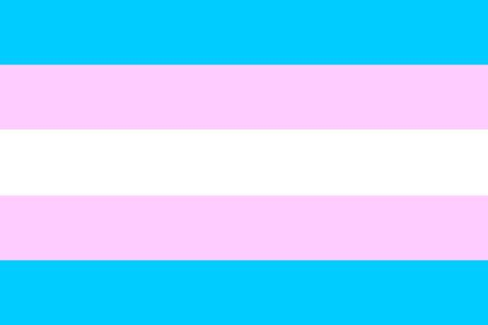 It should be understood that transgender people are normal people just like everyone else.