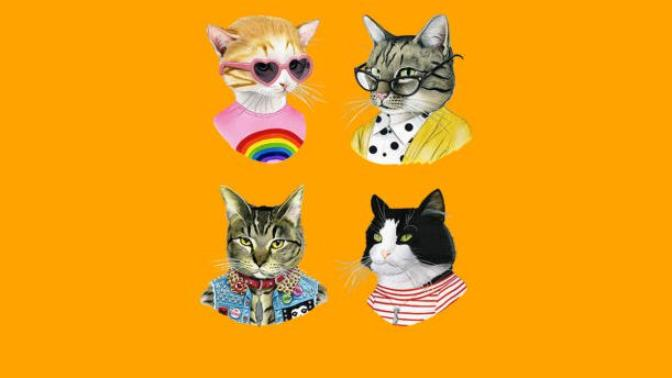 Cat Types And Properties