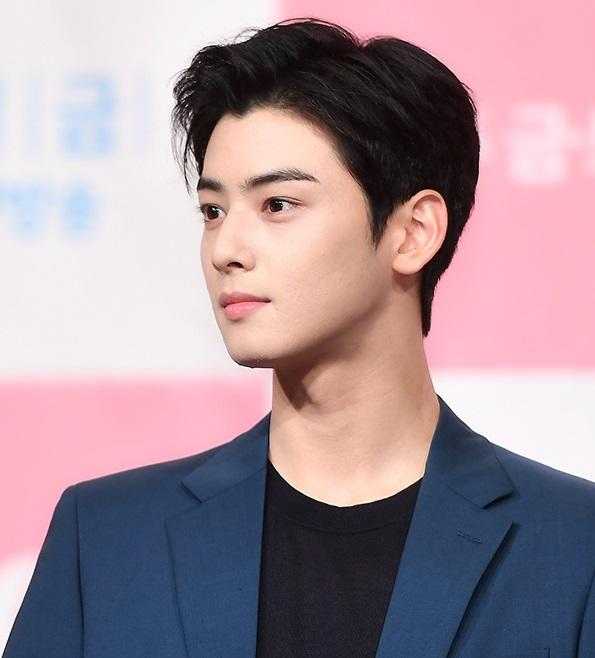 Cha-Eun Woo, a popular actor/singer in South Korea