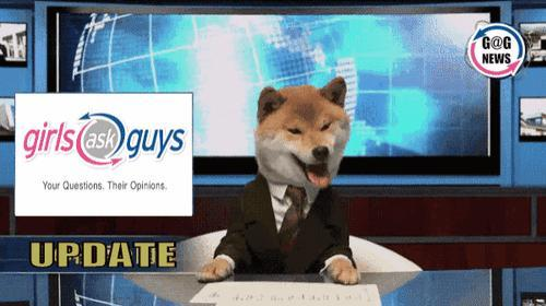 Breaking News Doge is here to tell you about the message update