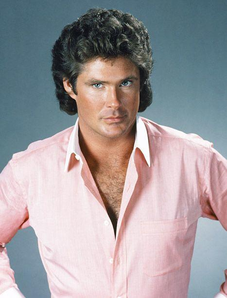 David Hasselhoff is a well known actor and a singer. He became famous as the Knight Rider and as the main star of the Baywatch.
