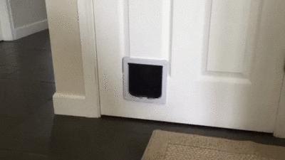 Nope!  Wrong house!