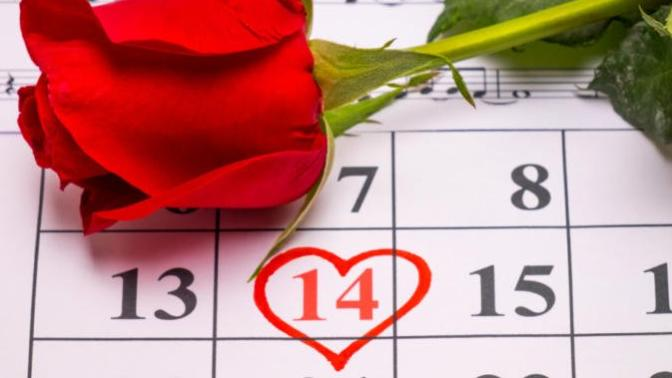 The Valentines Day Survival Guide