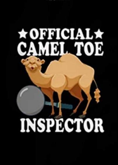 No camel toe aint sexy