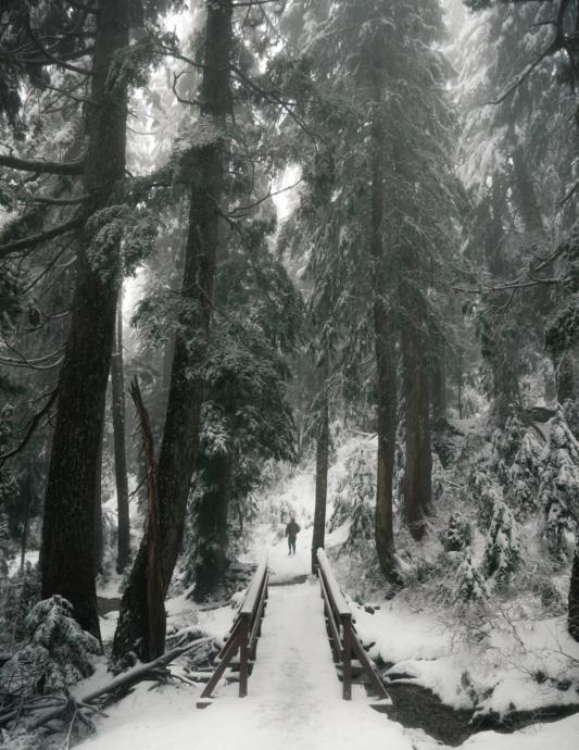 Ski tour; Photo by Yann Allegre on Unsplash