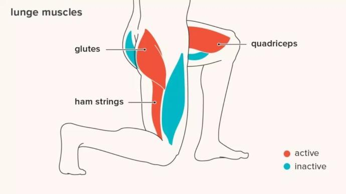 The glutes are active on one leg, unlike with squats