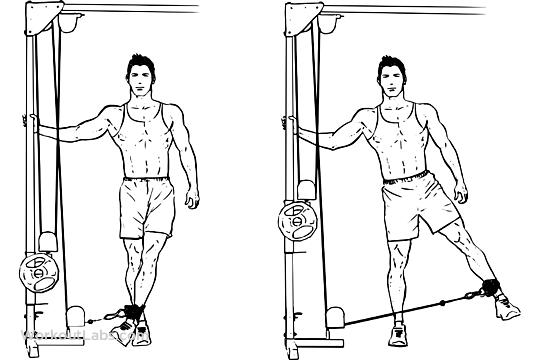 Cable hip abduction. Wont grow your ass, but is good for its well-being